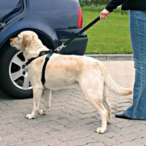 Trixie BEZPEČNOSTNÍ POSTROJ do auta - XL