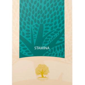 ESSENTIAL Stamina                                - 12