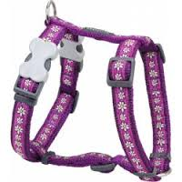 Postroj RD DAISY chain PURPLE - 20mm/36-59cm