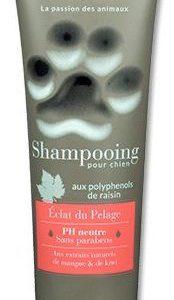 Šampon (beaphar)  ÉCLAT du PELAGE 250ml