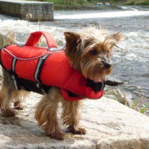 Plovací záchranná vesta pro psa - XL (60-96/65cm/do 45kg)