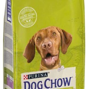 PURINA  dog chow  ADULT  Lamb & Rice - 2 x 14kg