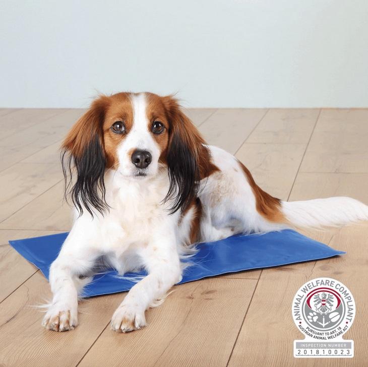 Trixie dog CHLADÍCÍ PODLOŽKA modrá - 90x50cm/XL