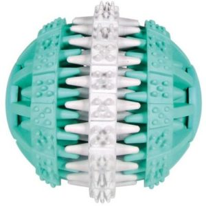 HRAČKA DENTAfun míč mátový - 7cm