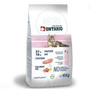 ONTARIO cat   KITTEN - 10 kg