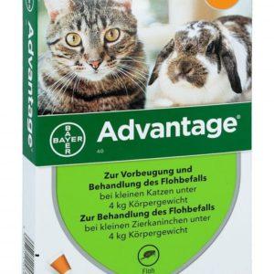 Antiparazitní spot-on  ADVANTAGE pro KOČKY a KRÁLÍKY 4ks - nad 4kg (fialový)