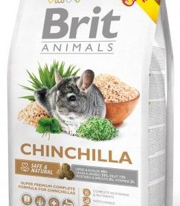 BRIT animals  CHINCHILA - 1