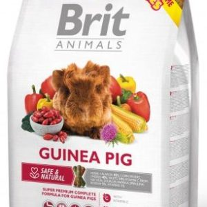 BRIT animals  GUINEA PIG - 1