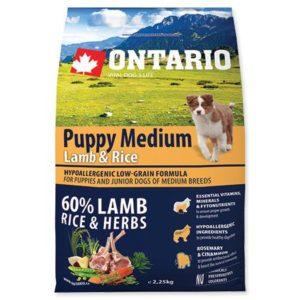 ONTARIO dog PUPPY MEDIUM lamb - 6