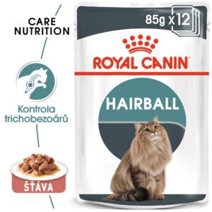 RC cat  kapsa   HAIRBALL care   v sosu - 85g