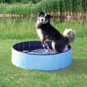Trixie dog BAZÉN pro psy / modrý - 160x30cm