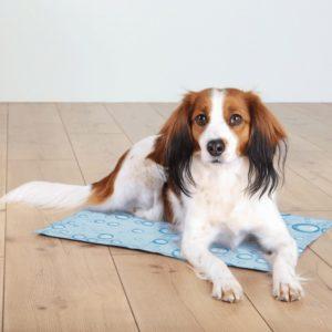 Trixie dog CHLADÍCÍ PODLOŽKA bublina - 90x50cm/XL