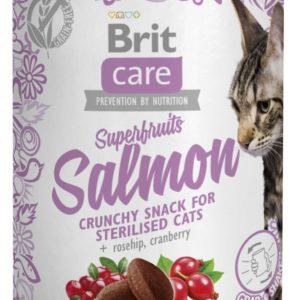 BRIT CARE cat SNACK  SUPERFRUITS SALMON - 100g