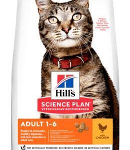 Hills cat  ADULT/chicken - 15kg