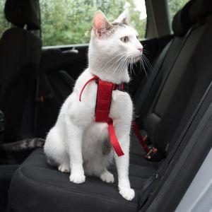Postroj bezpečnostní pro kočku (trixie) - 20-50cm