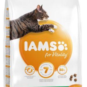 IAMS cat  ADULT  salmon - 800g